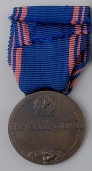 Medal of Aeronautical Valour, in Bronze Reverse