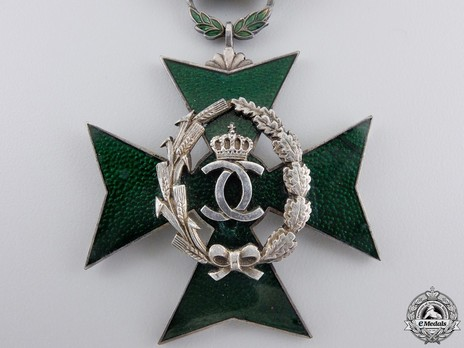 Order of Agricultural Merit, Type I, Knight's Cross Obverse Detail