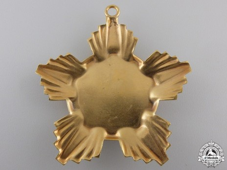 Order of the Victory of Socialism, Breast Star (in bronze gilt) Reverse