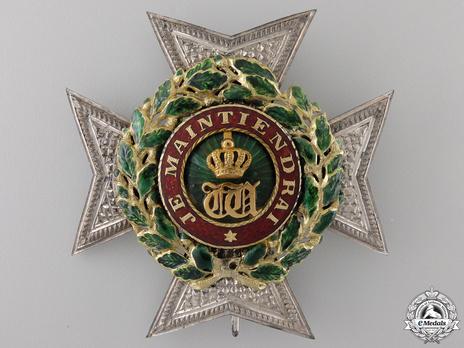 Grand Officer Breast Star (Gold by Joh. F. van der Horst) Obverse