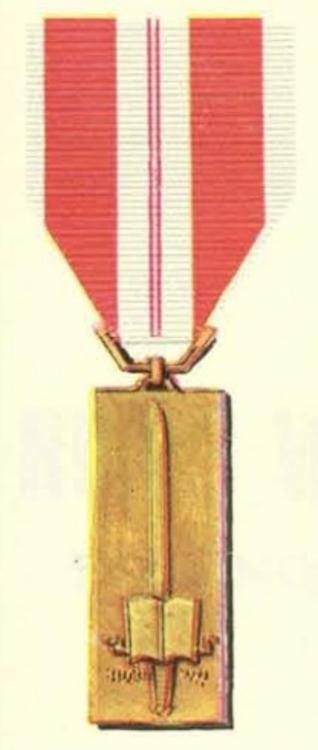 Vietnam training service medal