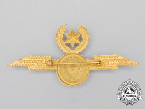 Air Force Pilot Badge Reverse