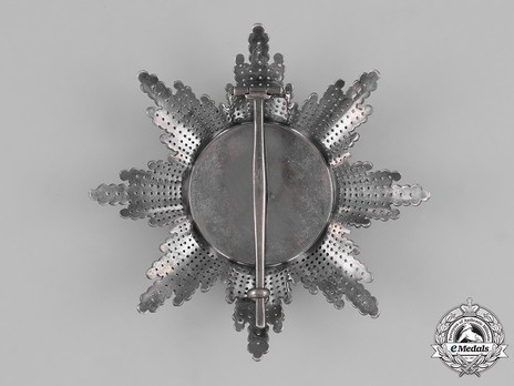 Type III, Civil Division, I Class Breast Star Reverse