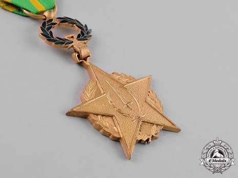 Order of the Sword, I Class Obverse