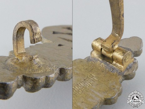 """Long-Range Day Fighter Clasp, in Gold (with """"200"""" pendant) Detail"""