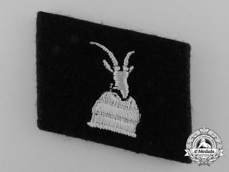 Waffen-SS 'Skanderberg' Division Collar Tab Obverse