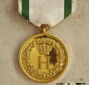 Medal for Merit, Loyalty, and Allegiance in Gold