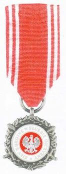 Medal of the Armed Forces in Service of the Fatherland, II Class Obverse