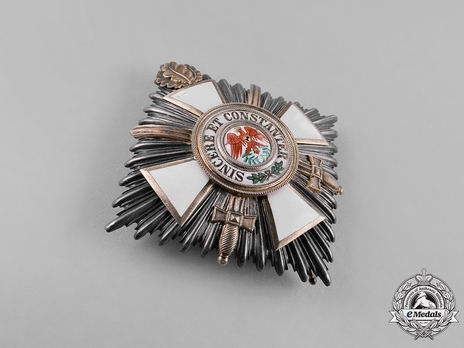 Type V, Military Division, II Class Breast Star (with oak leaves & swords, in gold)