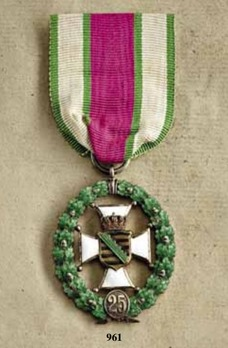 Civil Long Service Medal, Silver Decoration