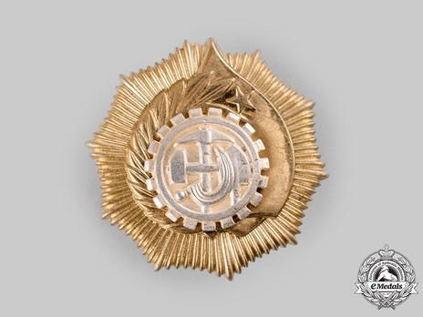 Order of Labour, Type II, I Class (screwback)
