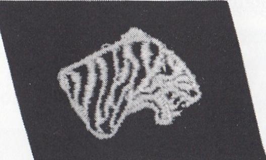 Waffen-SS Indian Legion Collar Tab Obverse