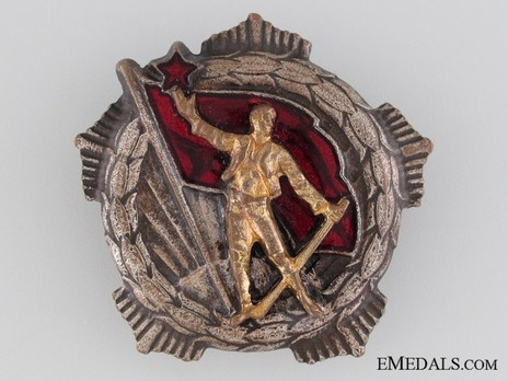 Medal for Remembrance, Type II, Large Badge (in Silver gilt) Obverse