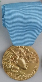 Medal of Honour for Long Command in the Air Force, in Gold (2010-Present) Obverse