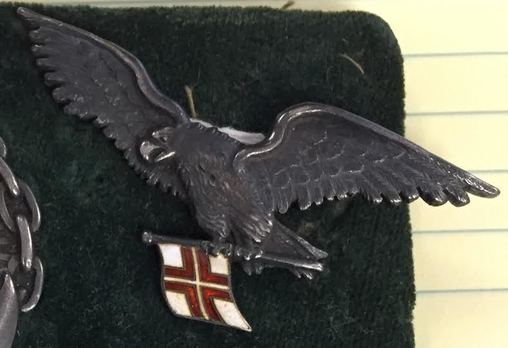 Navy Pilot Aviator Badge Obverse (Missing chain)