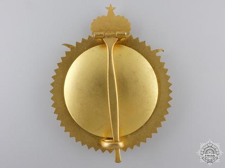 Order of Military Merit, Grand Cordon Breast Star Reverse