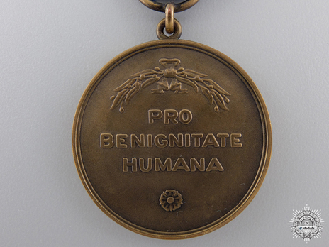Medal for Humanity, Bronze Medal Reverse