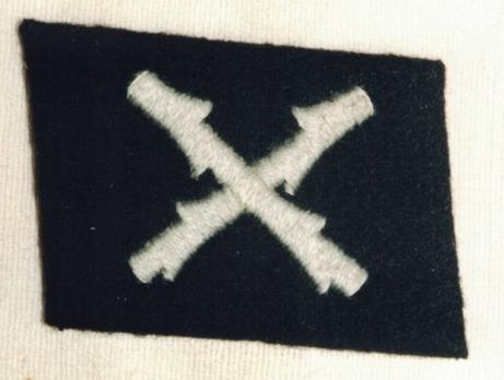 Waffen-SS 'Wallonien' Division Collar Tab Obverse