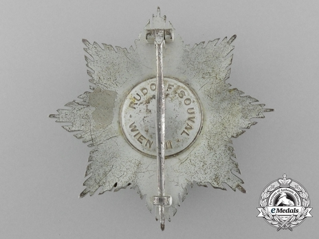 I Class Star (for combat service, with swords) Reverse