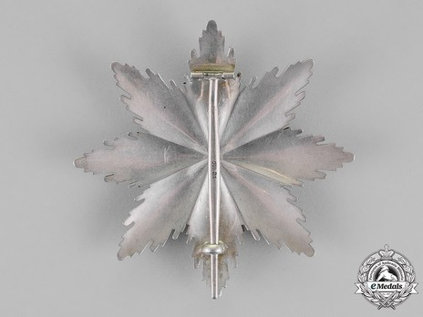 Grand Cross Breast Star with Swords Reverse
