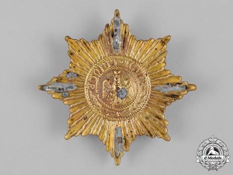 Guard Helmet Star (in bronze gilt) Reverse