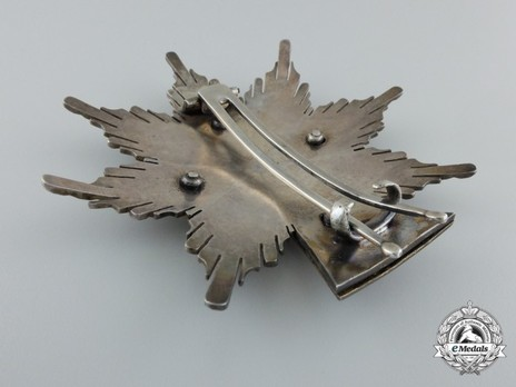 Order of Dannebrog, Grand Cross Breast Star (Silver/Silver gilt) Reverse