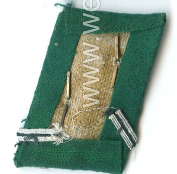 SA Obertruppführer Collar Tabs Reverse