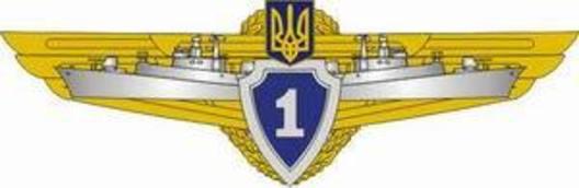 Сompulsory Military Service Navy 1st Grade Badge Obverse