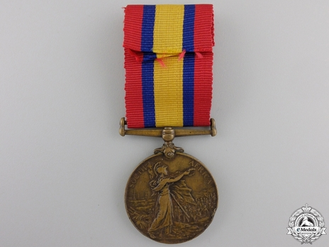 Bronze Medal (minted without date) Reverse