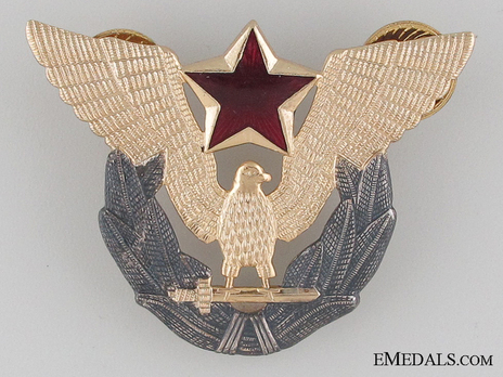 Air Force Pilot Cap Badge Obverse