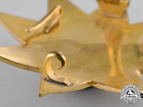 Order of the Star of Ethiopia, Grand Officer Breast Star (in Bronze gilt) Reverse Detail
