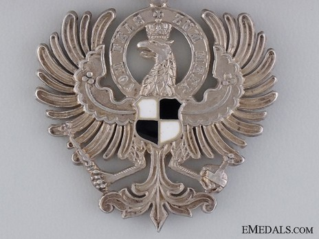 Eagle Member (with enamelled shield) Obverse