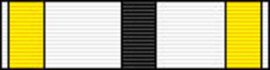 Commander (for Architecture, 2000-) Ribbon