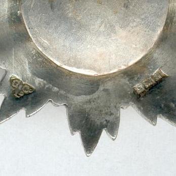 V Class Knight Reverse Detail