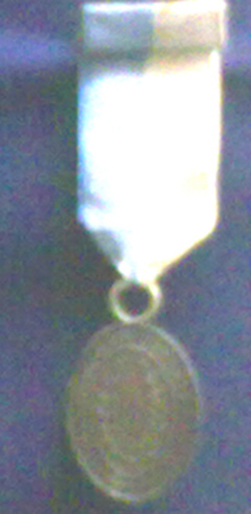 Medal+of+argentine+nation+to+those+wounded+in+combat+obverse