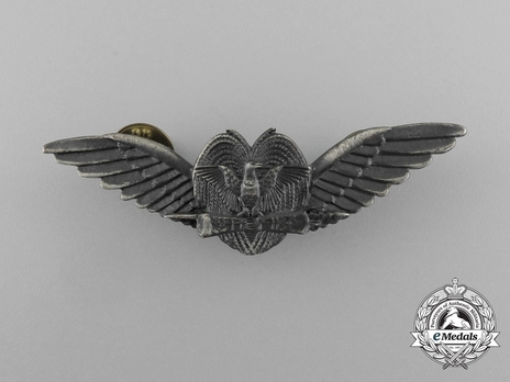 Papua New guinea Air Force Pilot's Wings Obverse