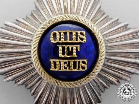 Royal Order of Merit of St. Michael, II Class Cross Breast Star Obverse Detail