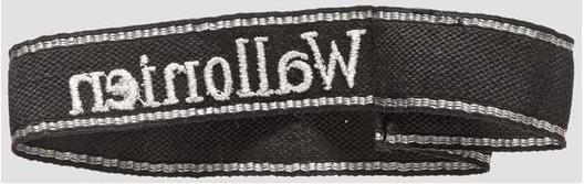 Waffen-SS Wallonien Cuff Title Reverse