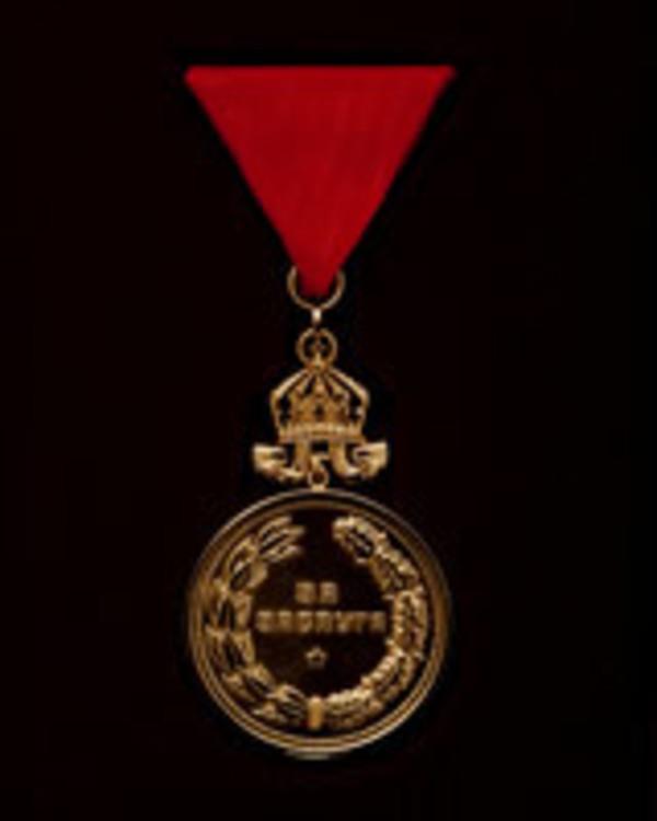 Medal+for+merit