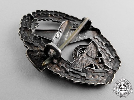 NSFK Motor Pilot's Badge, Type II Reverse