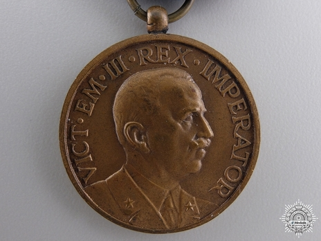Bronze Medal (by Stefano Johnson) Obverse