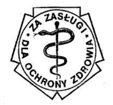 Decoration for Merit to Healthcare Obverse