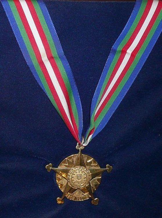 446px fbi medal of valor