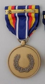 Global War on Terrorism Service Medal Reverse
