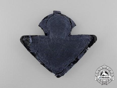Air Force Officer's Cap Badge Reverse