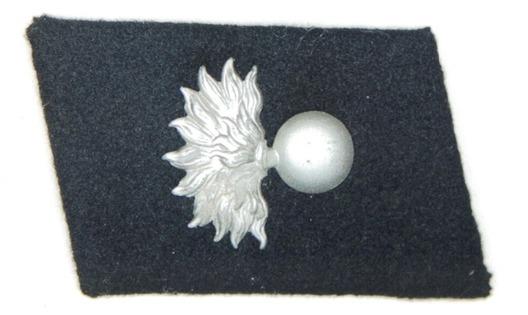 Waffen-SS 'Landstorm Nederland' Division Collar Tab Obverse