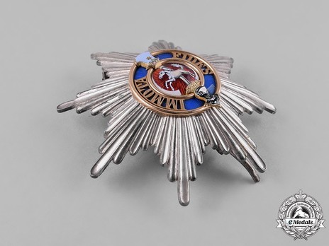 Dukely Order of Henry the Lion, I Class Breast Star Reverse