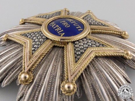 Military Order of Max Joseph, Grand Cross Breast Star Obverse Detail