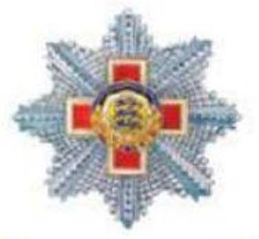 Order of the Estonian Red Cross, II Class Breast Star Obverse