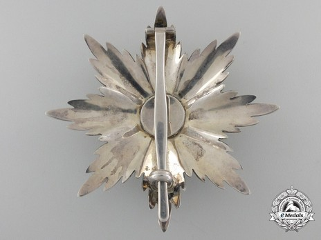 Breast Star (in silver) Reverse